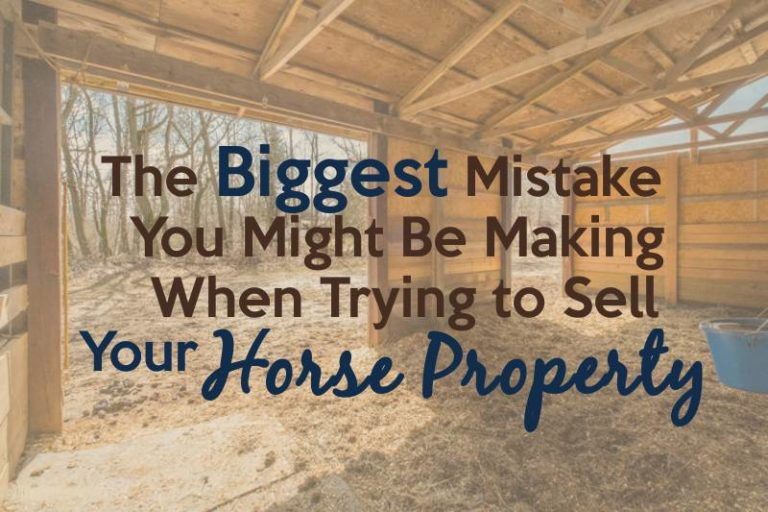 biggest mistake you might be making when trying to sell your horse property
